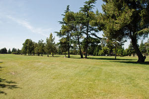 Elkhorn Golf Club,  Stockton, CA